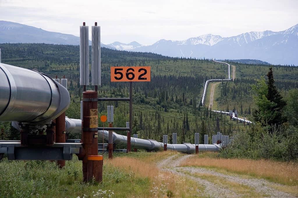 Image of Trans-Alaska Pipeline