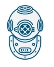logo of divers institute of technology